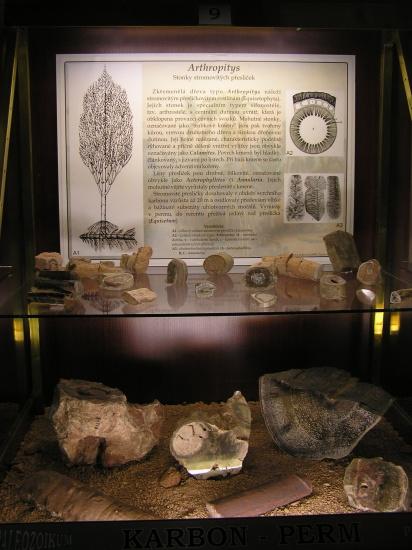 expozice-geologickeho-vyvoje-1720