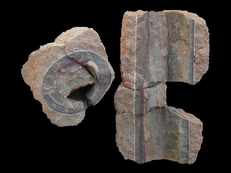 expozice-geologickeho-vyvoje-1723