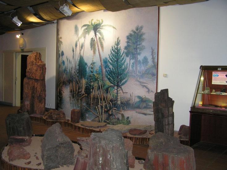 expozice-geologickeho-vyvoje-1716