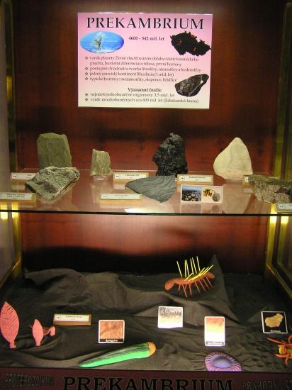 expozice-geologickeho-vyvoje-1719